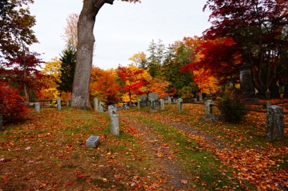 Beautiful fall foliage pathway; Sleepy Hollow cemetery