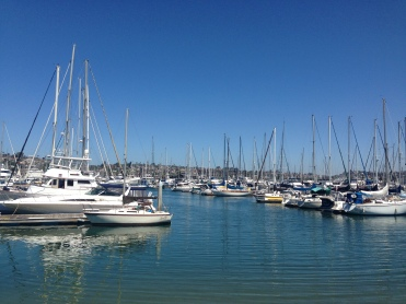 Sailboats in Shelter Island