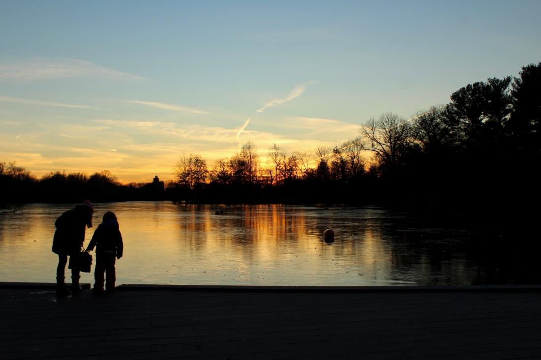 Golden hour at Prospect Park